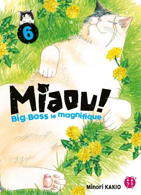 Miaou ! Big-Boss le magnifique T06